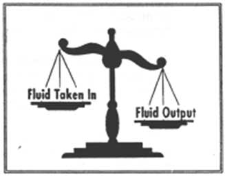 Fluid Scales